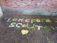 Scouts | Arts O'Clock